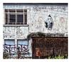The world fascinates me (PattyK.) Tags: ioannina giannena giannina epirus ipiros balkans hellas ellada greece grecia griechenland mycity whereilive lovelycity snapseed amateurphotographer greek ιωάννινα γιάννενα γιάννινα ήπειροσ βαλκάνια ελλάδα ηπόλημου όμορφηπόλη ευρώπη urban urbanart streetart wallart graffity wall αστικόσ αστικότοπίο γκράφιτυ τοίχοσ windows doors