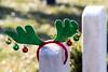 2017_TTG_WAA_Delia 6 (tapsadmin) Tags: taps tragedyassistanceprogramsforsurvivors anc arlingtonva arlingtonnationalcemetery wreaths wreath across america christmas holiday sunny cemetery headstone winter 2017 outdoor horizontal wreathsacrossamerica closeup detail antlers section60