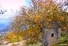 Demre Kapaklı Köyü,  köy yerleşiminin yamaçlarda ve verimli tarım arazilerinin düzlük alanda olması özelliği ile tipik bir Akdeniz köyü özelliğini taşır. Köy halkının çoğu seracılık nedeniyle Demre'ye taşınmıştır, Hemen alt kısmında Akdeniz'e hakim bir te
