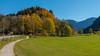 Alpenvorland (berndtolksdorf1) Tags: deutschland bayern oberbayern alpenvorland jahreszeit herbst bäume wiese bunt laub