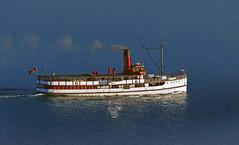 Anglų lietuvių žodynas. Žodis sea coal reiškia jūros anglių lietuviškai.