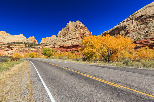 Fall in Capitol Reef NP