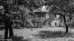 Unbenannt (weber.bert) Tags: at 169 analogefotografie blackwhite inbiancoenero noiretblanc grauwertabstufungen sw