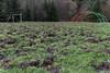 IMG_0043 (Le Radiophare) Tags: czech republic vsemly ceska kamenice srbska forest autum january intercamp ferdinanda