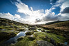 The Ruggedness of Dartmoor (pm69photography.uk) Tags: wistmanswoods wistmanswood dartmoor devon winter clouds hdr southwest sony sonya7rii a7rii ilce7rm2 voigtlander voigtlanderheliarf56 voigtlanderheliar10mmf56 westcountry ultrawide wideangle moody
