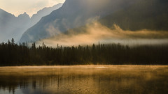 Golden morning mist (derliebewolf) Tags: natur sunrise bowmanlake glaciernationalpark fog mist rain goldenhour goldenlight goldenfog goldenmist nature panorama reflection backcountry backlight hiking travel summer lake water clouds cloud mountains continentaldivide crownofthecontinent camping forest nps glac earlymorning morning