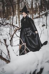 Yule Fairy Tale_1 (Mara Fox) Tags: elfdolleuna euna elfdoll bjd photostory yuletide fairytale
