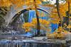 Φθινόπωρο στην Παλαιοκαρυά Autumn at Paliokarya (Dimitil) Tags: palaiokarya trikala stone bridges waterfall nature tradition thessaly hellas paysage cascade eau extérieur calme