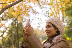 Young woman taking picture of autumn foliage (Apricot Cafe) Tags: img71349 asia asianandindianethnicities healthylifestyle japan japaneseethnicity narita tamronsp35mmf18divcusdmodelf012 autumn autumnfoliage blackhair candid carefree casualclothing charming cheerful chibaprefecture colorimage enjoyment happiness knithat leisureactivity lifestyles oneperson onlyjapanese outdoors people photographing photography publicpark realpeople relaxation selectivefocus sideview smartphone smiling sustainablelifestyle tourism tourist traveldestinations waistup walking weekendactivities women youngadult naritashi chibaken jp