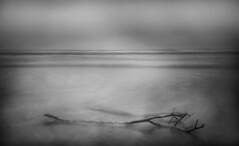 A Life's Final Embrace on the Edge of the Sea Along a Barren Shore and at the End of a Winter (Rick Exstrom) Tags: rickexstrom landscape blackandwhite monochrome ocean clouds longexposure