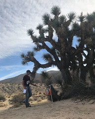 042 Outstreached Arms (saschmitz_earthlink_net) Tags: 2017 california orienteering redrockcanyon statepark laoc losangelesorienteeringclub mojavedesert desert kerncounty elpasorange