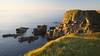 When the Sun Hits (4oClock) Tags: orkney nikon d90 18105 nikkor islands scotland britain uk north archipelago westray island paradise sunset sun lowsun summer westraak castleoburrian puffin birds wildlife sunshine stack rocks