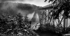 Just Water and Fog under the Bridge (Eve Photography By JC Clemens) Tags: whidbey island coupeville oak harbor landscape washington puget sound nikon d610 tamron fog bridge pine tree rain forest deception pass traveling water river ocean black white bw monochrome