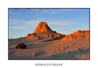 Afternoon light on desert landscape outback Australia