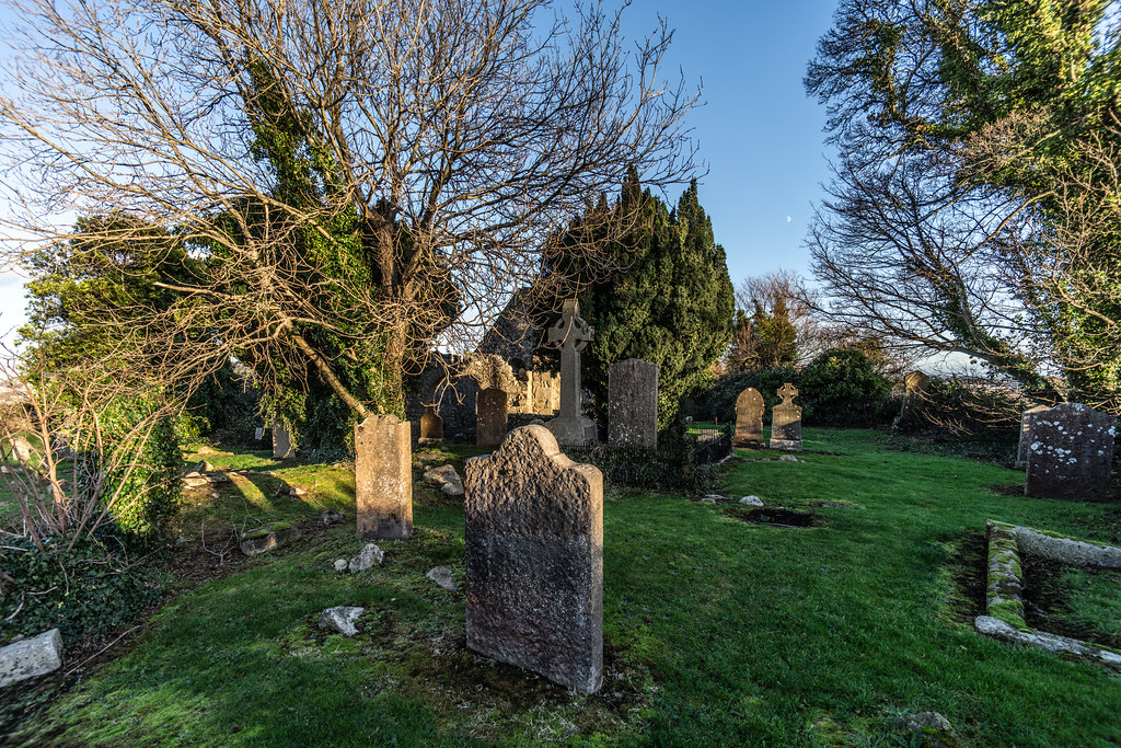ANCIENT CHURCH AND GRAVEYARD AT TULLY [LAUGHANSTOWN LANE NEAR THE LUAS TRAM STOP]-134574