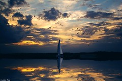 The sky is (gusdiaz) Tags: photoshop photomanipulation digital art nature agua reflejo winter invierno lago arte artistico colorido colorful cielo nubes bello relaxing tranquil tranquilo