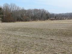 Millington Wildlife Management Area (Maryland DNR) Tags: millington wildlifemanagementarea wma kentcounty publicland field zone3