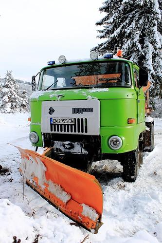 Ifa snow