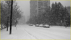 171229 Toronto Snowfall (12) (Aben on the Move) Tags: snow winter cold snowfall toronto canada willowdale