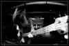 Capsula (pix2loz) Tags: rock concert live shows dark nb bw blackandwhite noiretblanc blackwhite noirblanc capsula lasirène larochelle picoftheday photography canon pix2loz fusion vintage woodstock bowie glam guitar bass