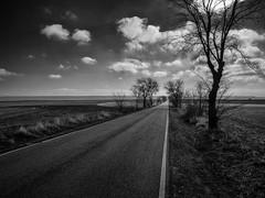 (una cierta mirada) Tags: landscape outdoors tree road clouds cloudscape nature bnw blackandwhite