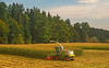 Corn Harvest (fotofrysk) Tags: harvest corn harvester tractor farm green woods forests austriancountrysideviennasalzburgtrain viewfromthetrain railjet easterneuropetrip vienna austria wien oesterreich sigma1750mmf28exdcoxhsm nikond7100 201709275775