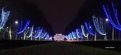 Christmas Monza (stefano.chiarato) Tags: villareale viale luci lights luminarie monza lombardia italy pentaxart pentax pentaxlife pentaxk70