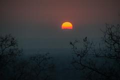 African Safari. Sunrise. (Lena and Igor) Tags: sunrise skyscape sun