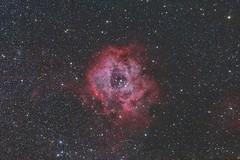 Rosetta (Kuro-Japan) Tags: ngc2237 ngc2238 ngc2239 ngc2246