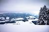 breathe in (gato-gato-gato) Tags: 28mm apsc alpen atzmaennig atzmännig berge oberland ricoh ricohgr schneeschuhe schneeschuhlaufen voralpen wandern wanderung winter zürcheroberland autofocus digital gatogatogato gatogatogatoch hiking mountaineering pointandshoot snapshot snowshoeing tobiasgaulkech wwwgatogatogatoch sanktgallenkappel sanktgallen schweiz ch switzerland suisse svizzera sviss zwitserland isviçre landschaft landscape landscapephotography outdoorphotography mountains mountain gebirge fels stein stone rock