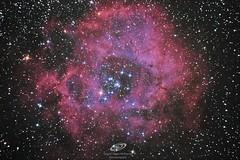Rosette Nebula (Caldwell 50) (gerardtartalo) Tags: nebula nebulosaroseta space deepspace espacio cosmos universo universe telescope telescopio stars rosettenebula