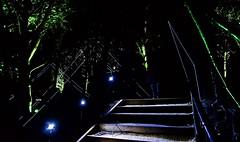 Son et Lumière II (ye sons of art) Tags: soundart lightart nationaltrust priorpark bath banes somerset england uk night dark illuminations alight