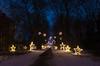 last year's christmas garden (sixthofdecember) Tags: christmasgarden botanicalgardens botanischergarten berlin germany outside outdoors dark darkness night nightshot winter cold snow light lights christmaslights fairylights