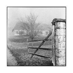 the gate • villequier, normandy • 2016 (lem's) Tags: gate farm ferme barriere villequier normandy normandie rolleiflex t