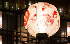 A lantern of COREDO Muromachi in night (COREDO室町) (christinayan01 (busy)) Tags: nihonbashi tokyo night japan building perspective architectrure store architecture lantern