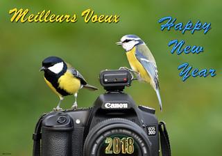 Meilleurs vœux pour 2018 et Happy New Year :)