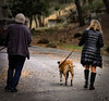 Walking the dog (bluesbby) Tags: dog walking exercise hills man woman canine