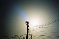 (夏先生) Tags: nikonl35ad nikonl35af nikon l35 ad af kodakcolorplus200 kodak colorplus 200 film analog analogue taoyuan taiwan