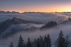 Fog in the valley - Lüderenalp (Captures.ch) Tags: abend abenddämmerung alpen aufnahme baum berge himmel hügel landschaft nebel schweiz sonneuntergang tal wald winter alps capture dusk evening fog forest hills landscape mountains sky snow sunset swiss switzerland tree valley bern berneroberland emmental lüderenalp