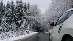 Winterrallye (nissansports) Tags: