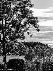 Unbenannt (weber.bert) Tags: badwörishofen analogefotografie blackwhite inbiancoenero noiretblanc grauwertabstufungen sw