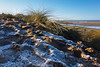 Frosty Dunes (paul_taberner_photography) Tags: ainsdale southport frost frozen