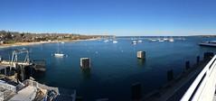 IMG_0042 (Dan Correia) Tags: marthasvineyard island ocean harbor boat ferry jetty panorama iphone iphone6s topv111 topv333 topv555