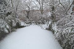 All snowed in (pauluk1234) Tags: all snowed