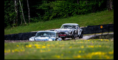 Ac Cobra 289 (1963) (Laurent DUCHENE) Tags: peterauto dijonprenois 2017 sixtiesendurance motorsport grandprixdelagedor car ac cobra 289 shelby americancar
