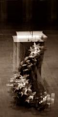 16 - Créteil, Cathédrale Notre-Dame, Lutrin (melina1965) Tags: 2017 décembre december îledefrance valdemarne nikon coolpix s3700 créteil église églises church churches fleur fleurs flower flowers