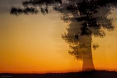 Blurred lines-ICM....HSS!!! (Joe Hengel) Tags: ephratapa ephrata pa pennsylvania tree silhouette silhouettes sunset sunlight black yellow golden goldenhour goodevening icm hss happyslidersunday slidersunday slider field blurredlines intentionalcameramovement