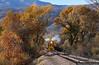 The Pumpkin Train (jamesbelmont) Tags: hebervalleyrailroad charleston utah provoriver hebervalley emd mrs1 1813 pumpkintrain drgw riogrande