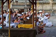Hindu Ritual at Monkey Temple, Pemuteran, Bali (M_Hauss) Tags: indonesien indonesia asia asien bali temple tempel monkey monkeys affe affen tiere ritual hindu people