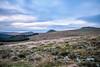 Trees and Tors (NikNak Allen) Tags: devon dartmoor moorland moors wild grass grasses stones tor sky clouds morning landscape view distance look longexposure hills valleys light